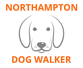 Northampton Dog Walker Project Image